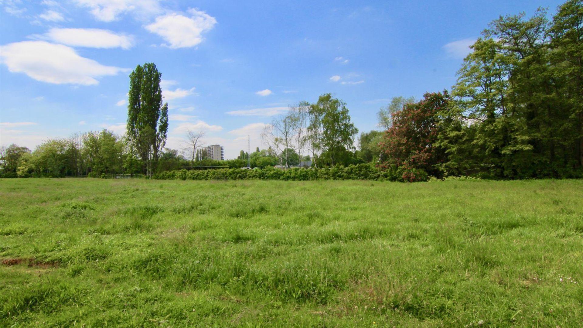 Anemoonproject - Steenhof in Tienen